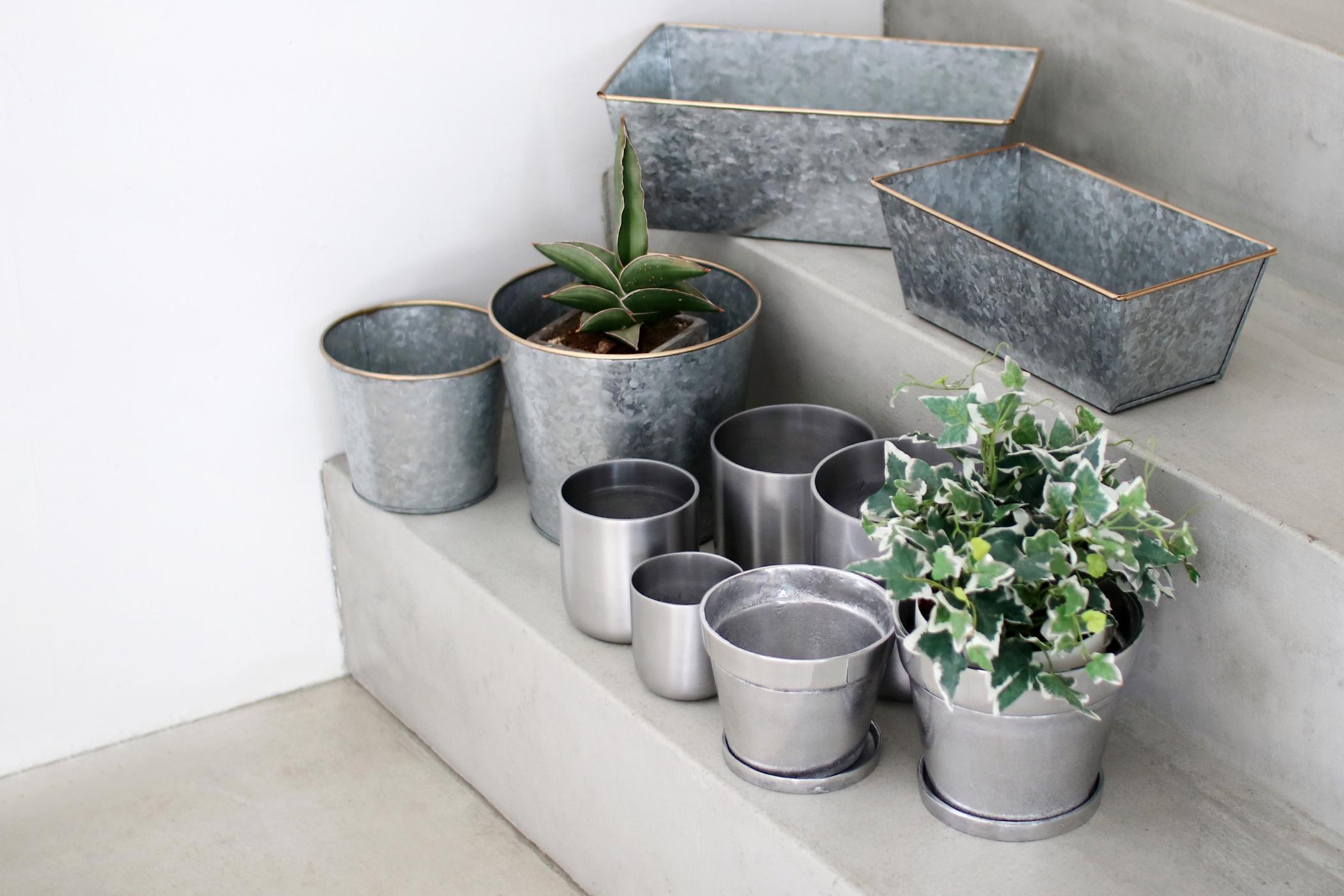 Planter&Plant Cover